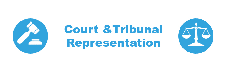 Court & Tribunal Representation
